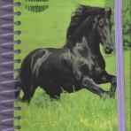 Carnet A6 avec stickers N° 2